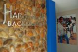 Hard Rock Backpackers