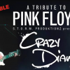 Mel Botes: Crazy Diamond: Pink Floyd Tribute @ Potters Place |