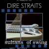 Mel Botes: Sultans of Swing : Dire Straits Tribute @ Potters Place |