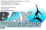 Bay Gymnastics