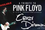 Mel Botes: Crazy Diamond: Pink Floyd Tribute @ Potters Place  